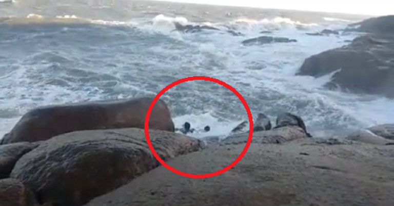 couple die after getting hit by waves, couple die in beach accident, couple drown in beach accident
